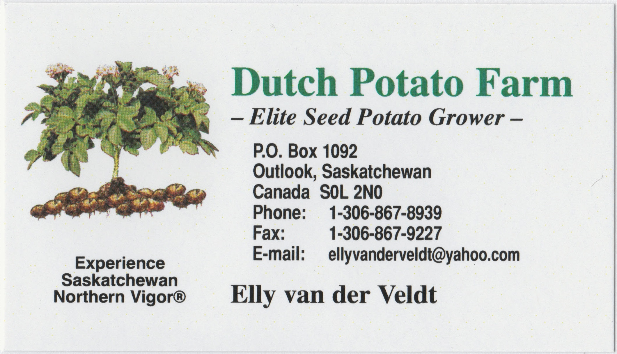 Dutch Potato Farm